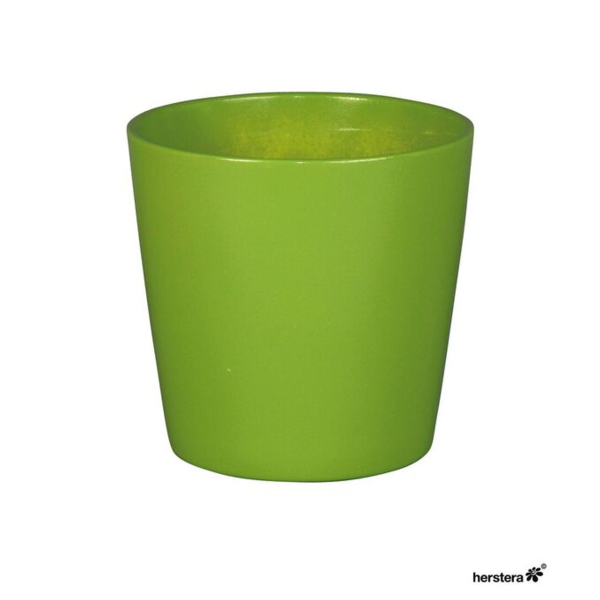 Cometa 17x16 verde