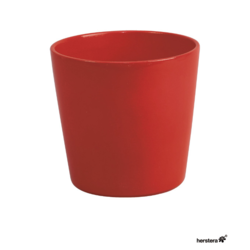 Cometa 12x12 Rojo