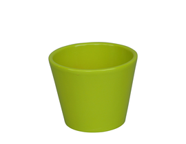 Vaso cactus 9x9cm verde