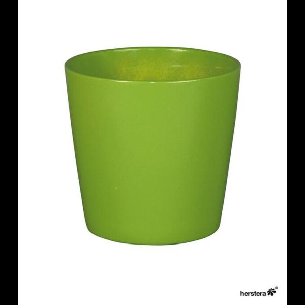 Cometa 10x10cm verde hoja