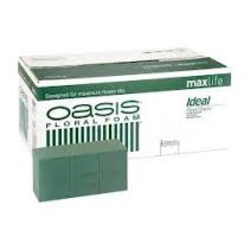 Esponja oasis ideal maxlife caja 20unid.